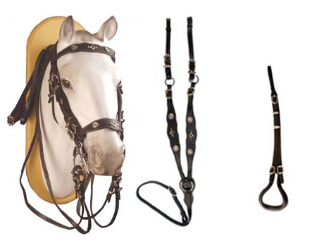 Portuguese Leather Set - Headpiece, double reins, breastplate,crupper