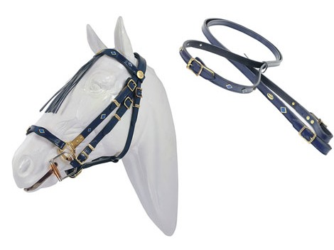 Pioneer spanish leather bridle - halter with reins